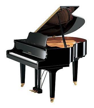 PIANOFORTE A CODA NUOVO