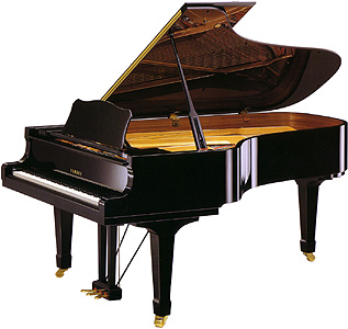 "NOLEGGIO PIANOFORTI DA CONCERTO ""STEIWAY & SONS""-TREVISO-VENEZIA-UDINE"