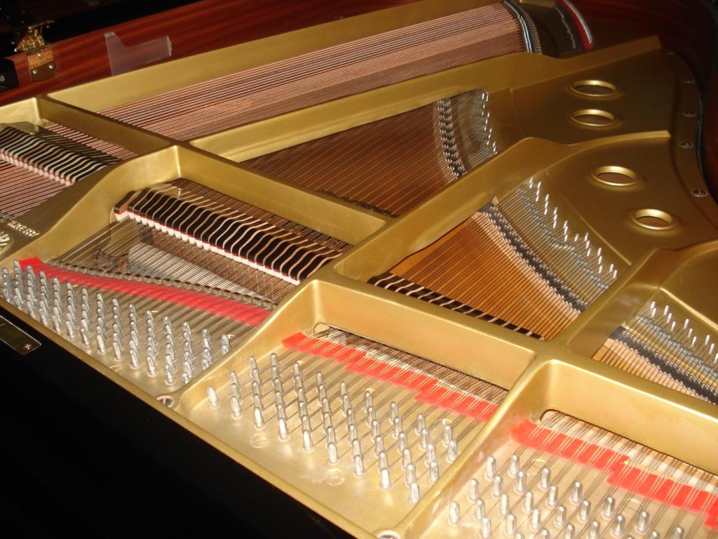 NOLEGGIO PIANOFORTE GRAN CODA STEINWAY & SONS PER CONCERTI- EVENTI – NOLEGGIO PIANOFORTE GRAN CODA PER TEATRI – NOLEGGIO PIANOFORTE GRAN CODA PER EVENTI – VENEZIA – TREVISO – PADOVA – VERONA – VICENZA – UDINE – TRIESTE –