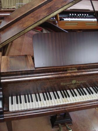 PIANOFORTE A CODA-OCCASIONE-