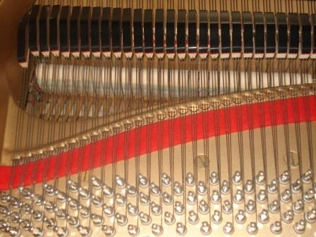 "YAMAHA G5/C5 -PIANOFORTE 3/4 CODA-USATO- GARANZIA 10 ANNI- PIANOFORTI USATI YAMAHA DA ""LONGATO PIANOFORTI""- PIANOFORTI EX-NUOVO DA LONGATO PIANFOORTI (NOVENTA DI PIAVE)- PIANOFORTI SEMINUOVI USATI DA LONGATO PIANOFORTI- PIANOFORTI IMPORTAZIONE GIAPPONE USATI DA ""LONGATO PIANOFORTI""-VENEZIA-"