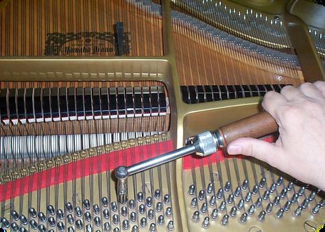 """ACCORDATURA PIANOFORTI A TREVISO """"LONGATO PIANOFORTI""""- ACCORDATURA PIANFOORTI A ROVIGO-ADRIA-FERRARA- RIPARAZIONE PIANOFORTI AD ADRIA- RIPARAZIONE PIANOFORTI A ROVIGO- TRASLOCO PIANOFORTI A ROVIGO DA """"LONGATO PIANOFORTI""""- VENDITA PIANOFORTI A ROVIGO- VENDITA PIANOFORTI AD ADRIA- ACCORDATURA E RESTAURO PIANOFORTI A VENEZIA """"LONGATO PIANOFORTI""""- ACCORDATURA-RESTAURO E TRASLOCO PIANOFORTI DA """"LONGATO PIANOFORTI A NOVENTA DI PIAVE""""!-ACCORDATURA PIANOFORTI A TREVISO- TRASLOCO PIANOFORTI A TREVISO- RIPARAZIONE PIANOFORTI A TREVISO """"LONGATO PIANOFORTI"""""""